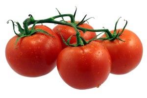 tomato-9